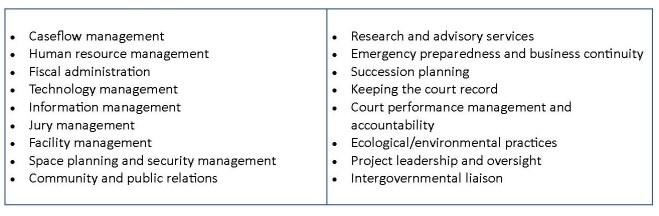 Court Leader Roles chart of admin duties 7-11-20 (2)